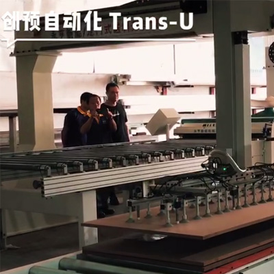 Multi-blade saw production line