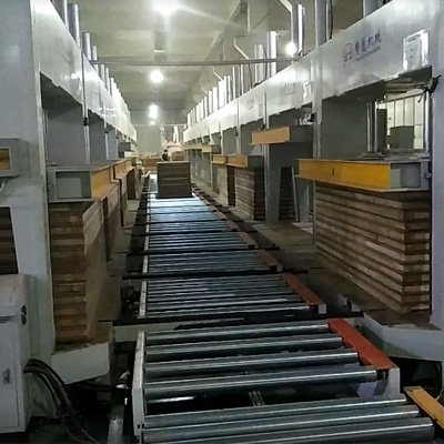 20 sets of Cold pressing production line